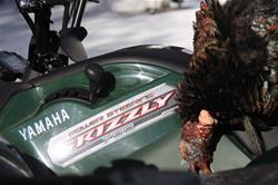 Yamaha Outdoors Tips — When Gobblers Show But You