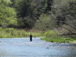 Yamaha Outdoors Tips — Remote Four Wheeler Trout Stream Fishi