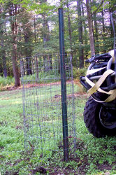 Yamaha Outdoors Tips — Evaluate Your Food Plot