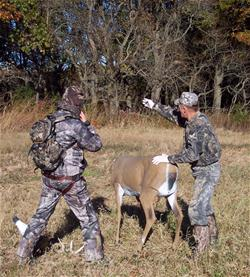 Yamaha Outdoors Tips — Trick or Treat? Deer Decoy Tactics