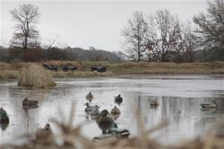 Yamaha Outdoors Tips — Eight Decoy Spread Tips