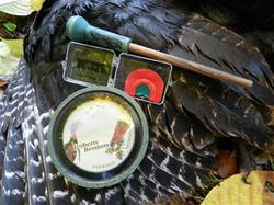 Yamaha Outdoors Tips — Cold Calling to Fall Turkeys