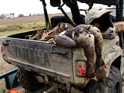 Yamaha Outdoors Tips — Oddball Waterfowl Tactics