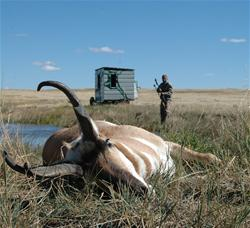 Yamaha Outdoors Tips — Waterhole Pronghorns