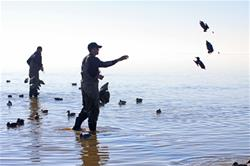 Yamaha Outdoors Tips — Waterfowl Decoys, Now and Later