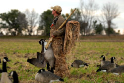 Yamaha Outdoors Tips — Early Season Goose Tactics