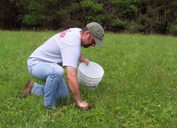 detailed instructions for taking a soil sample Take 15 to 20 subsamples within one sampling area  also, plan to take your  soil sample at the same time of year,  detailed instructions on soil sam.